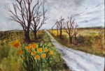 country-road-w-daffodils